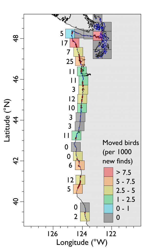 heatmap of birds moving